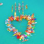 Flotilla heart