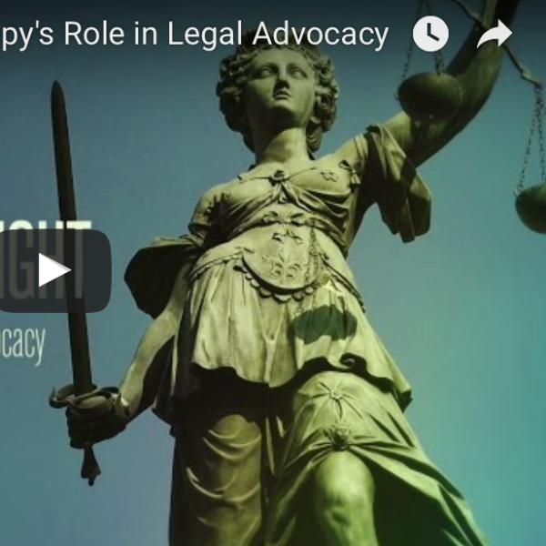 legal strategy
